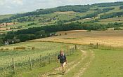 Guided walking holiday in England - Cotswold towns and villages