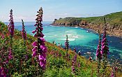 Guided walking holiday in England - The many faces of Cornwall