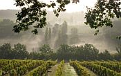 Guided wine walking holiday in the Dordogne