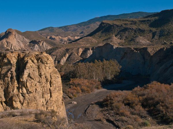 View of the Tabernas Desert in winter.