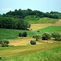 Hayfields and small woodlands in rural Croatia. Photo by MayaSimFan. http://en.wikipedia.org/wiki/File:Fields_hr_1.JPG