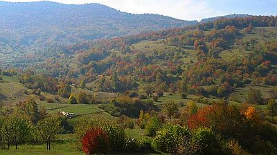 A Croatian autumn landscape.