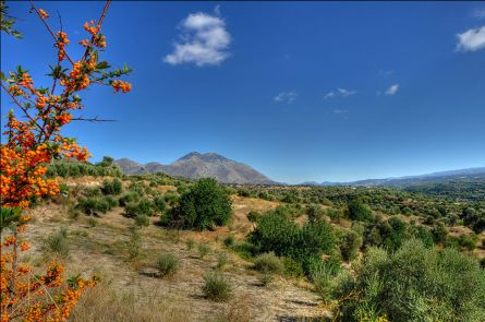 Beautiful colourful scrubby landscape on Crete with mountains in the background.