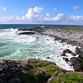 View on rocky coastline and the sea with pink Thrift flowering in the foreground in Ireland.