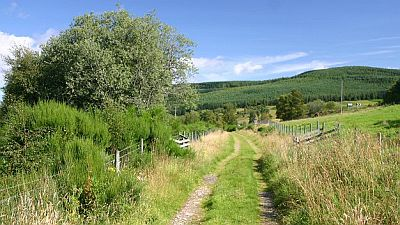 A long distance walking route through a beautiful green countryside of rolling hills and bushes. Original photo http://commons.wikimedia.org/wiki/File:Speyside_Way_near_Cromdale_-_geograph.org.uk_-_538608.jpg