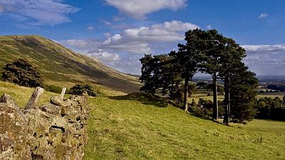 View on a beautiful landscape in the Campsie fells with green hills, pines and a stone boundary wall. Original photo http://commons.wikimedia.org/wiki/File:Campsie_Fells_and_Blane_Valley_-_geograph.org.uk_-_1564314.jpg