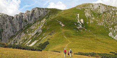 Walking during a holiday to Austria, original image at http://commons.wikimedia.org/wiki/File:Zlackensattel,_Mitteralpe.jpg.