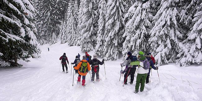 Group of hikers snowshoeing down a mountain slope.