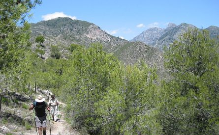 Walkers walking up a steep mountain path in springtime