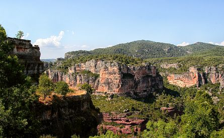 Deep wooded gorges in Catalonia