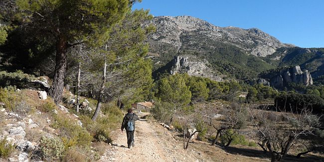 Walking in the Alicante countryside