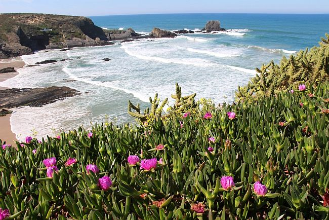 View on Beautiful Bay along the Vicentian coast in Portugal