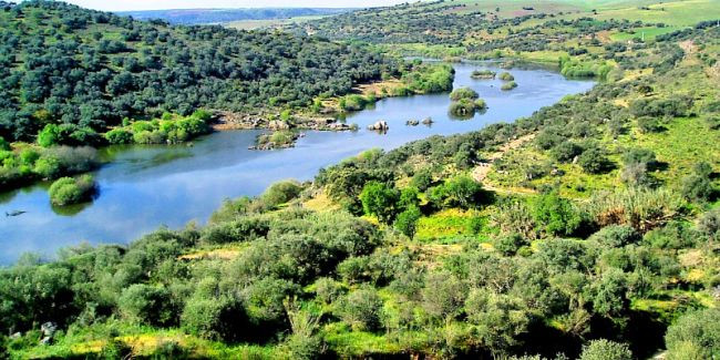 The Guadiana River flowing through a lush green landscape