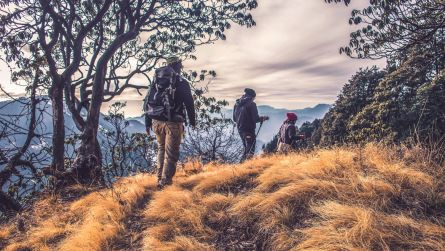 small group of walkers going over a mountain track