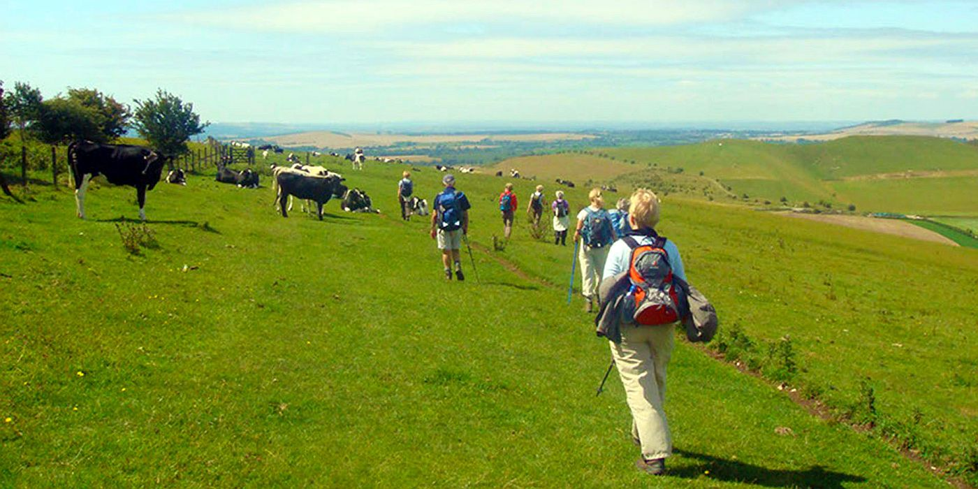 Discover England's beautiful South West with Bath and West Walks