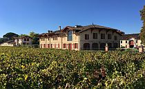 building in the middle of vineyards