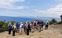 Group of walkers gathered on a huge rock overlooking the sea