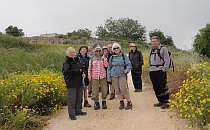 Group of walkers posing for a picture on a road with many yellow flowers on the sides
