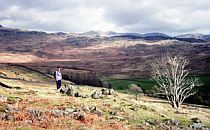 Walker in a moorland landscape.