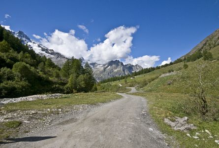 View on a path leading into Ferrett valley in the French Alps