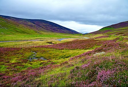 Beautiful landscape in the Scottish highlands