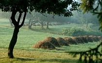 Hungarian valley - pales of hay