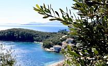 Distant village on the sea shore of Corfu, olive branches as a frame