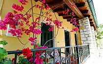 Terrace with beautiful flowers