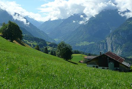 Green lush valley with high mountains in the Swiss Alps