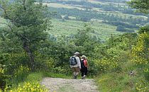 Walking couple on a hilly path