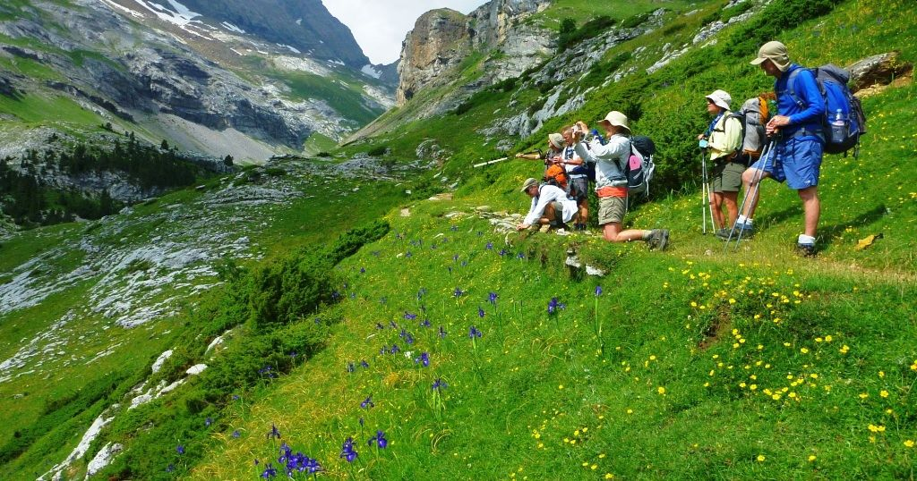 Hikers on a track in the Pyrenees taking pictures