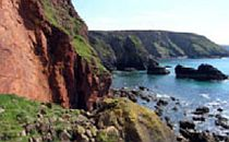 Towering cliffs and the deep blue sea along the Cornwall coast path.