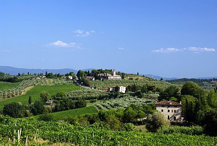Vineyards and farmhouses in Tuscany