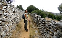 Walker on a sand-path between a pair of dry-stone walls