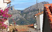 view on Benifato