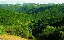 Green rolling hills of Stranja