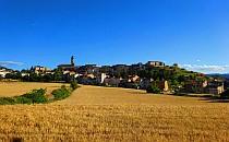 Little town in an yellow field