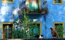 Cat and chicken sitting next to each other on a stone wall in front of a picturesque blue house.