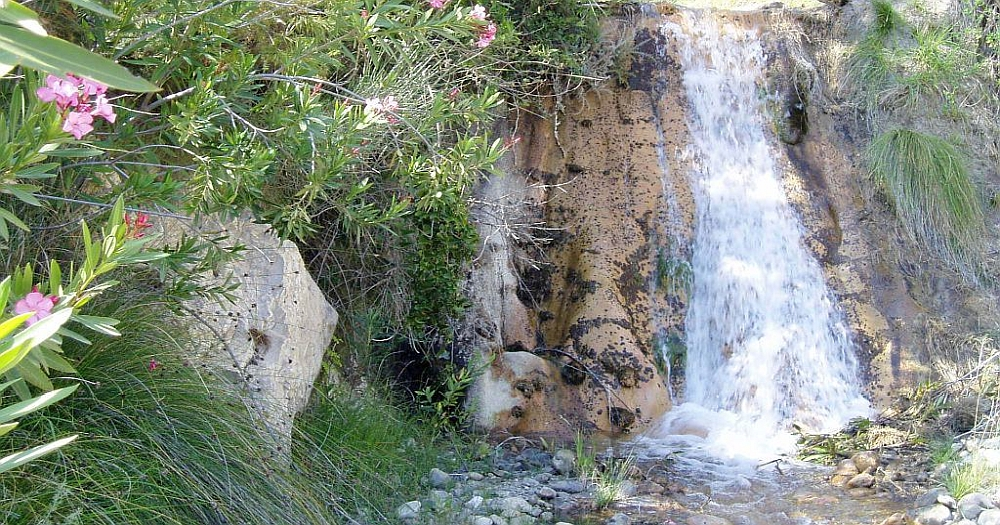 Small waterfall with beautiful flowers next to it