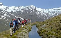 group with guide on a walk in the sierra nevada walking