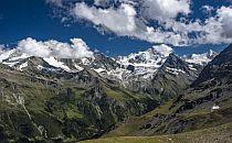 Mountain arrey