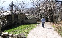 Walking on a path past a stone building underneath a blossoming cherry tree.