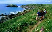 Walkers looking from cliffs to a wide view across the Pembrokeshire coast