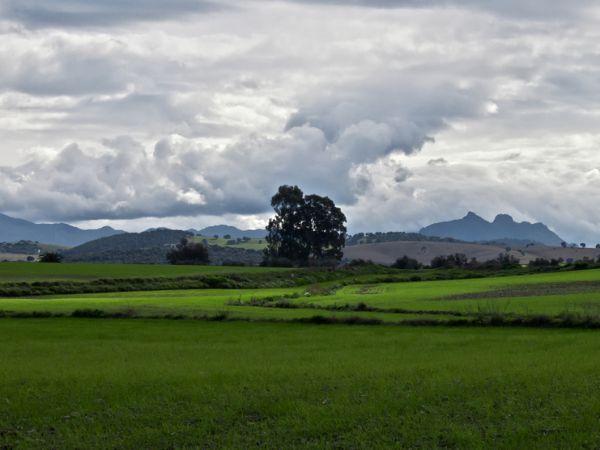 landscape in Sierra de Grazalema