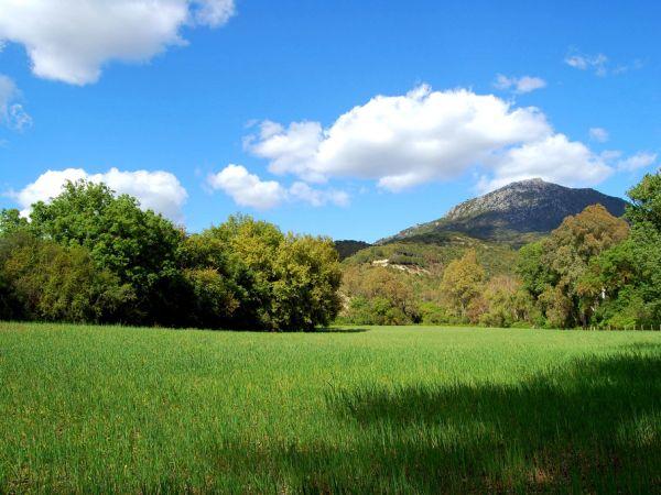 Landscape in Sierra de Grazalema Natural Park
