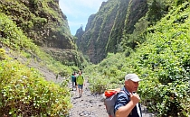 Group of people walking in a green canyon