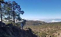Man staying on the edge of cliffs, pine trees around