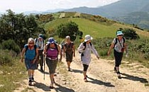 Small group of walkers coming up a hill along a sandpath