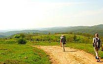 Man walking on a trail