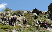 Group of walkers in a rocky area